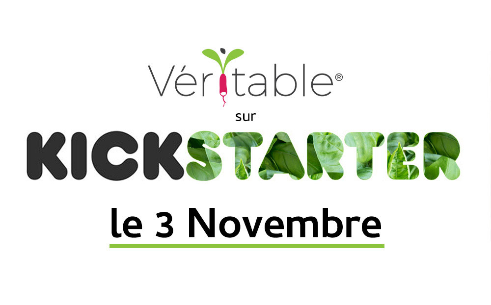 En financement participatif sur Kickstater le 3 Novembre