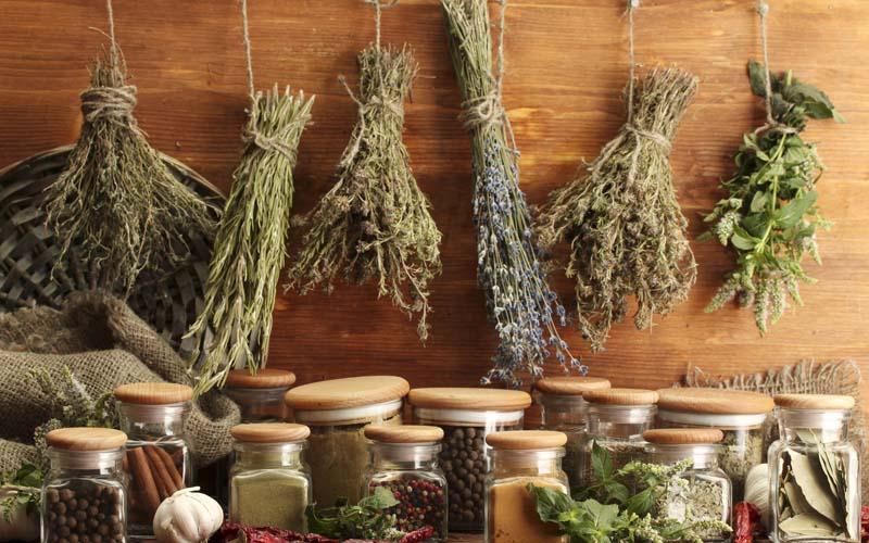 Comment conserver vos herbes aromatiques ?