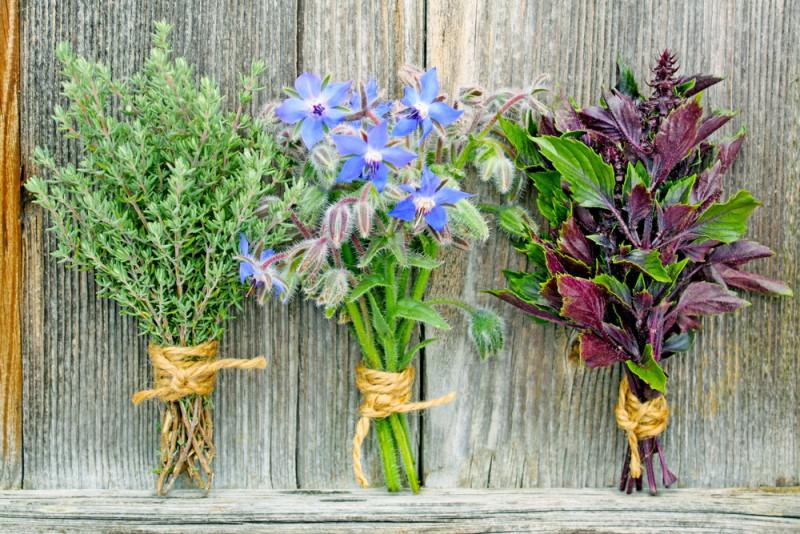 Nos conseils et astuces pour réaliser ses propres bouquets d'aromatiques