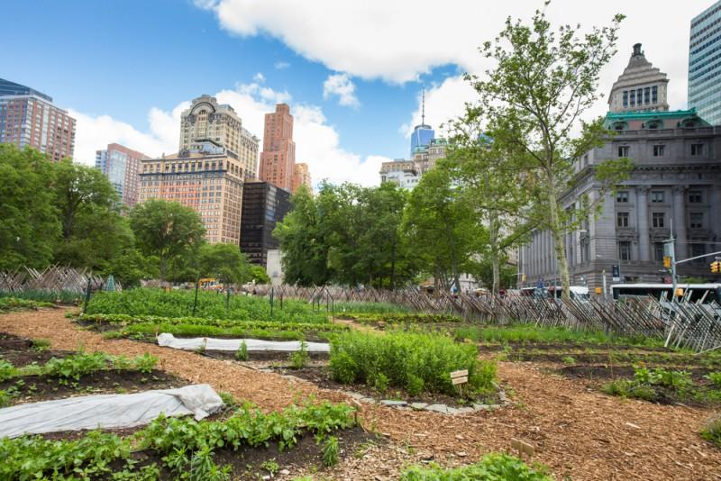 Les concepts les plus fous de l'agriculture urbaine !