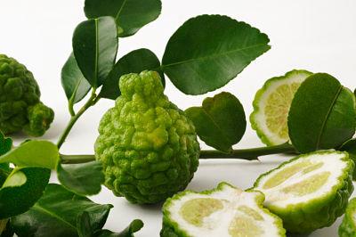 Lime Kaffir