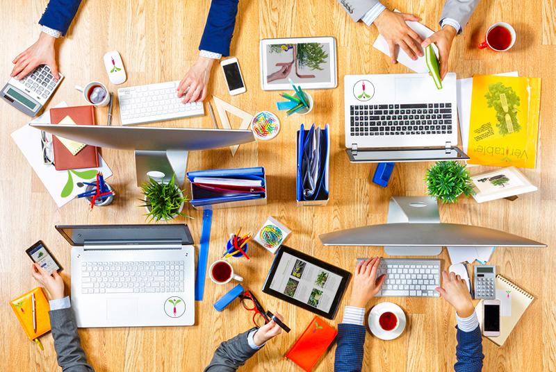 Startup prospère : l'équipe Véritable s'agrandit!
