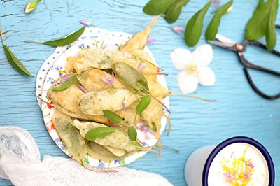 herbe aromatique de sauge bio en chips pour l'apéritif
