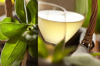 recette du vin blanc glacé à la sauge et au miel pour un apéritif festif