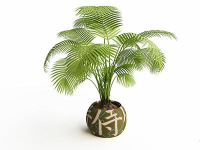 am liorez votre bien tre au travail avec ces plantes qui vous motivent. Black Bedroom Furniture Sets. Home Design Ideas