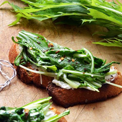 tartines de pain grillé avec fromage de chèvre frais et salade mizuna