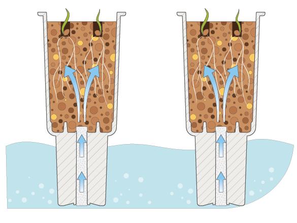 système d'irrigation potager veritable