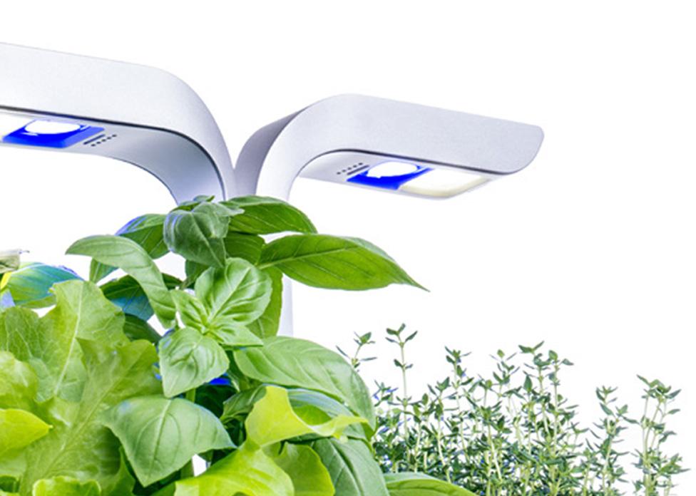 eclairage-led-potager-interieur