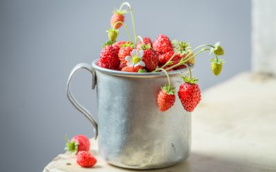 Nos conseils pour cultiver des fraises des bois dans son potager d'intérieur Véritable®