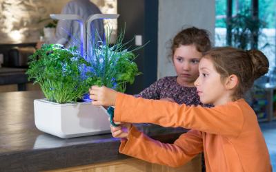 10 raisons d'initier ses enfants au jardinage en intérieur