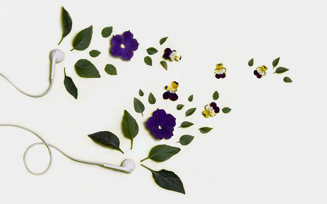 Pourquoi les plantes aiment la musique?